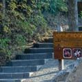 Pine Ridge Trail Hike.- Kamiak Butte County Park