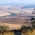 Great views of the rolling hills of Palouse.- Kamiak Butte County Park