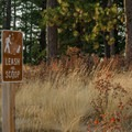 Dogs are allowed on the trail.- Kamiak Butte County Park