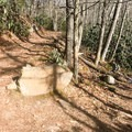 Here is another opportunity to switch between the lower and upper trails.- Cascade Falls