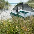 Camping among the wildflowers on Bear Island.- Bear Island Beach Campsites