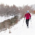 Snowshoeing along the North Fork of the Big Wood River.- North Fork Snowshoe