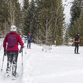 The snowshoe trail hugs the cross-country tracks, and your dogs are allowed to join!- North Fork Snowshoe