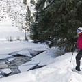 Frozen sections of the river make for some beautiful scenery. - North Fork Snowshoe