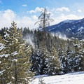 The wind can make for some beautiful snow-blown scenery. - Galena Lodge Snowshoe
