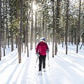 The beauty and the variety of the terrain and scenery is stunning.- Galena Lodge Snowshoe