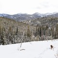 Looking west toward Galena Pass.- Galena Lodge Snowshoe