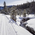 Gladiator Creek runs alongside the track and really adds to the beauty. - Galena Lodge Nordic Center