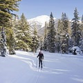 Heading up the hills of Titus Creek, where the trail has a blue difficulty rating. - Galena Lodge Nordic Center