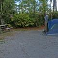 Setting up camp.- T. H. Stone Memorial St. Joseph Peninsula State Park Campground