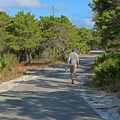 Walking toward the cottages.- T. H. Stone Memorial St. Joseph Peninsula State Park Campground