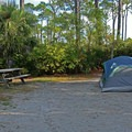 Campsites are complete with fire rings and picnic tables.- T. H. Stone Memorial St. Joseph Peninsula State Park Campground