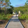 Trail toward the dunes.- T. H. Stone Memorial St. Joseph Peninsula State Park Campground