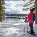 Exploring the snowy banks of Boca Reservoir's western shore after veering from Boca Reservoir Road.- Boca Reservoir Road