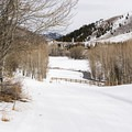The prettiest section of these trails can be enjoyed as you head down toward the creek. There are several blue, intermediate routes as well as the Sidewinder, one of the few trails that is rated black and difficult. - Sun Valley Nordic Center