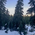The trail pops out of the forest cover as it descends to First Lake.- Dog Mountain Snowshoe