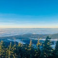 The view north, with Vancouver Island in the distance. Below the fog lies Vancouver and the Georgia Strait.- Dog Mountain Snowshoe