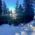 The early morning sunlight hitting the return trail near Dinkey Peak.- Dog Mountain Snowshoe