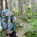 On the approach up Cerise Creek.- Mount Matier: North Face