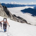 Moving up the Anniversary Glacier.- Mount Matier: North Face