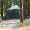 Simple camping, just a hammock and a net.- Carolina Beach State Park Campground