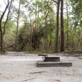 Each site has a picnic table and fire ring.- Carolina Beach State Park Campground