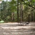 Some sites are quite spacious.- Carolina Beach State Park Campground