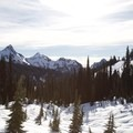 View from Paradise Valley Road right before you start up the trail.- Mazama Ridge Snowshoe