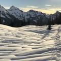 View from the trail on the ridge.- Mazama Ridge Snowshoe