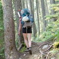 A great example of the rooted coastal trail. - Vantage Peak