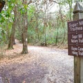 The Sugar Mill Nature Trail begins across the street from the park's visitor center.- Sugar Mill Nature Trail