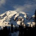 View of Mount Rainier from the trail.- Mazama Ridge Snowshoe