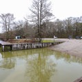 Paddlers can launch from a public boat ramp at Martin Lake Road and Rookery Road. Otherwise, Champagne's Cajun Swamp Tours located 500 feet south of the boat ramp rents kayaks from their docks.- Lake Martin Paddling