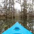 Visiting in a kayak allows navigation in the narrow groves that would not be possible with any type of larger craft.- Lake Martin Paddling