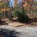 Each site has small paved aprons.- Mount Pisgah Campground