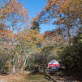 Tent camping at Mount Pisgah.- Mount Pisgah Campground