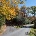 All the loops are paved but narrow.- Mount Pisgah Campground