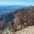 Open views from the summit of Mount Wilson.- Mount Wilson via Mount Wilson Trail
