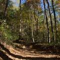 The trail to Rainbow Falls is wide but rugged in a few spots.- Rainbow Falls + Turtleback Falls