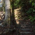 Some sections of trail have steep stairs.- Rainbow Falls + Turtleback Falls