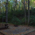 Typical site at Raymond Fisher Campground.- Raymond Fisher Campsites