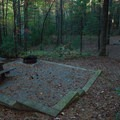 Campsites at Raymond Fisher.- Raymond Fisher Campsites