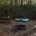 Beginning the day.- Raymond Fisher Campsites