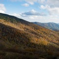 The Appalachian Mountains.- Roan Highlands: Carver's Gap to Grassy Ridge