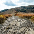Some parts of the trail are rocky.- Roan Highlands: Carver's Gap to Grassy Ridge