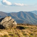 The panorama is like a painting everywhere you look.- Roan Highlands: Carver's Gap to Grassy Ridge