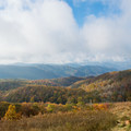 The Appalachian Mountains.- Max Patch