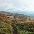 Autumn on the mountain.- Max Patch