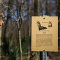 There are several informative posts along the boardwalk. - Tensas River National Wildlife Refuge