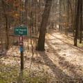 Owl Heaven Trailhead. - Lake D'Arbonne State Park